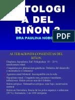 PATOLOGIA DEL RIÑON clase 4