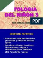 PATOLOGIA DEL RIÑON clase  3