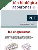 Chaperon As