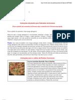Instruções_de_plantio_para_sementes_Droseras_Dionaea_muscipula_Utriculária_e_Byblis cópia