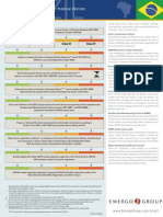 BRAZIL_regulatory_chart.pdf