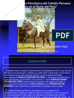 Tesis Caracterizacion Fenotipica Del Caballo Peruano de Paso