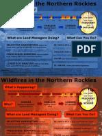 Info Graphic Final Draft