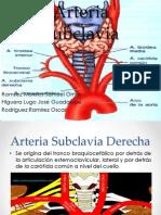 Arteria_Subclavia_xxx