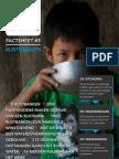 ICS factsheet rijstbanken