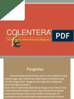 Coelenterata OKE