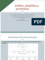 24 Aminoácidos, péptidos y proteínas