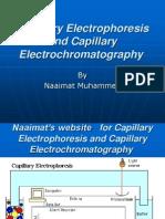 Capillary Electrophoresis and Capillary Electrochromatography