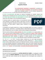 DPP - Inquérito Policial