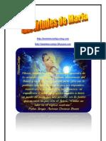 VIRTUDES DE MARÍA   ALIANZA DE AMOR