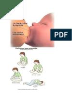 Cuál es la importancia de la lactancia materna