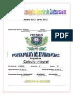 Calculo Integral ( Figuras Amorfas )