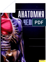 Анатомия человека.Иллюстрированный атлас