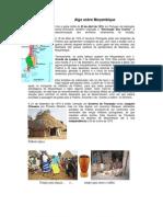 Ficha Informativa Mia Couto e Mocambique 10c2baano