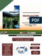 PROGRAMACION  ANUAL 2011-01-04