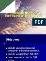 2 Base Molecular de La Herencia