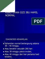 GIZI IBU HAMIL