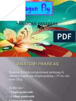 Anatomi Pankreas Ppt
