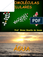 Aula 02 I_MacromolA©culas A-gua e ProteA-nas