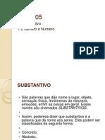 AULA 05 - substantivo