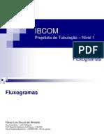 Fluxogramas_19122011[1] (1)