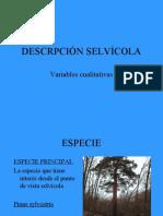 DESCRIPCIÓN VARIABLES SELVICOLAS