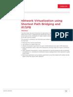 Dn4469 - Network Virtual Using Spb White Paper