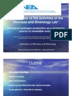 Biomass and Bioenergy Lab