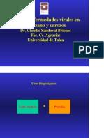 Charla Enfermedades Virus Manzanos y Carozos