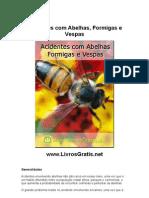 Acidentes Com Abelhas, Formigas e Vespas