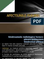 filehost_.PLEUREZII (1)