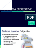 01sistdigestivotc0809-090502192227-phpapp01