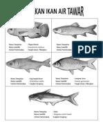 KHB PERTANIAN TING 2 - Ternakan Ikan Air Tawar