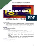 Citologia de Moco Fecal