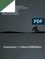 Relacion Entre Amenaza y Vulnerabilidad
