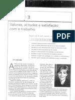 cap.3 valores atitudes e satisfação com o trabalho