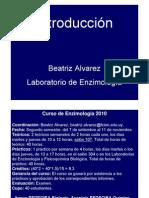 enzimes Introducción 2010