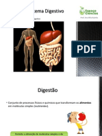 CN9-Sistema Digestivo