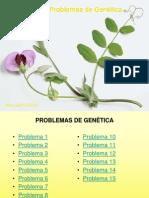 15_problemas