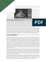 Blender Manual - Pt