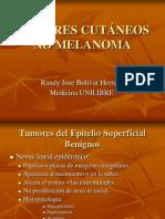2 Tumores Cutaneos No Melanoma (2)