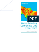 Water-Bearing Carbonate Gas Reservoirs China