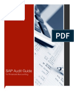 SAP Audit Guide Financial Accouting