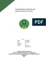 Laporan Praktikum 1 Kimia Organik