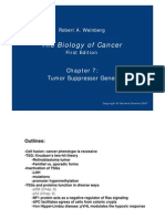 Biology of Cancer_971021.PDF
