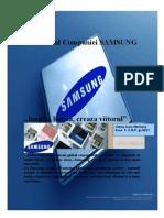 Samsung Profilul Companiei