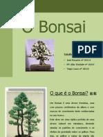 Apresentação - O Bonsai