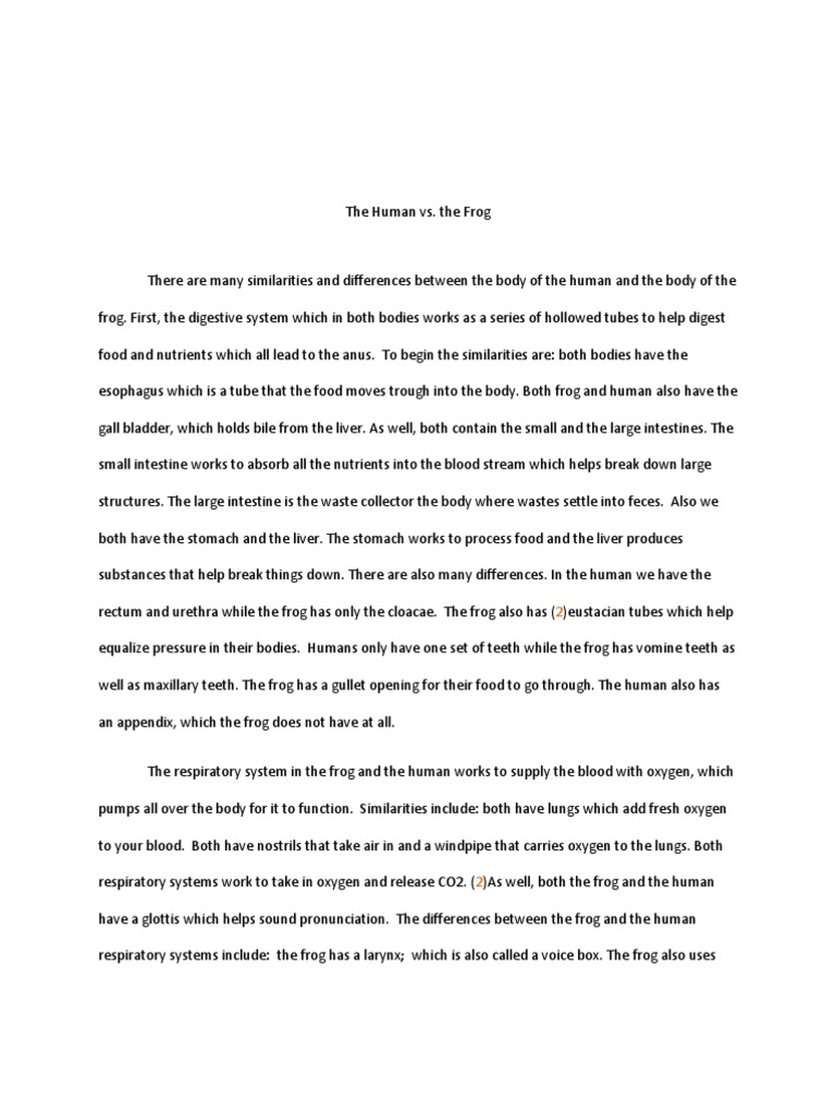 Buy law essay uk. Writing Good Argumentative Essays. respiratory ...