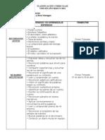 Planificacin Curricular 3