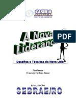 A Nova Liderança Sebre 2006